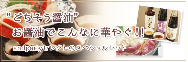 """""""ごちそう醤油"""" お醤油でこんなに華やぐ!! andpartyセレクトのスペシャル3本セット"""